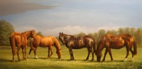 janines horses oil on canvas